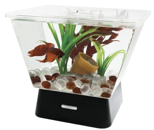 Best Fish Tanks: Top 10 Picks in 2019 (with Reviews & Guide) Made Home Aquariums Design on home entertainment designs, home cafe designs, home gardening designs, home dog kennel designs, home glass designs, home art designs, home salt designs, home school designs, home library designs, home lake designs, home archery range designs, home beach designs, home water feature designs, home cooking designs, home construction designs, home decor designs, florida home designs, home plans designs, home park designs, home castle designs,