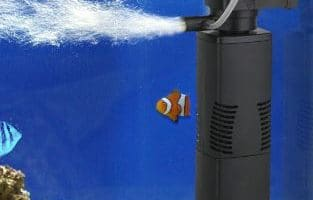 Guide to clean a fish tank filter