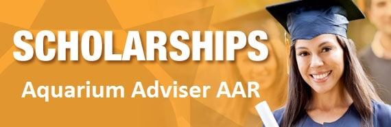 scholarships-aquarium-adviser
