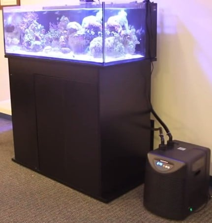 5 Best Aquarium Chillers 2019 Reviews Top Picks Amp Guides