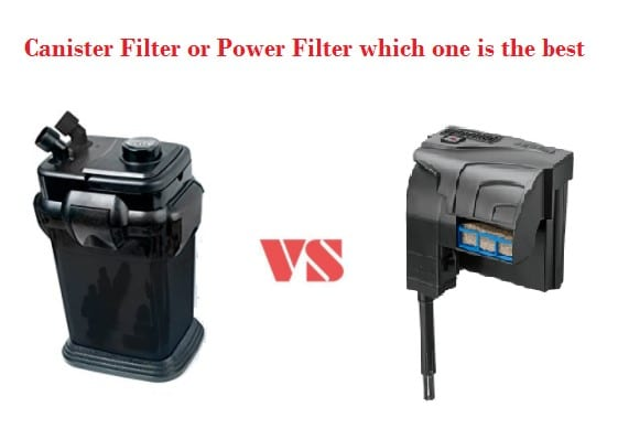 Canister Filter vs Power Filter: Which One is the Best?