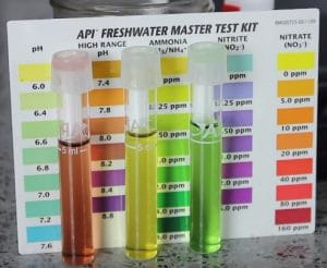 Best aquarium test kits