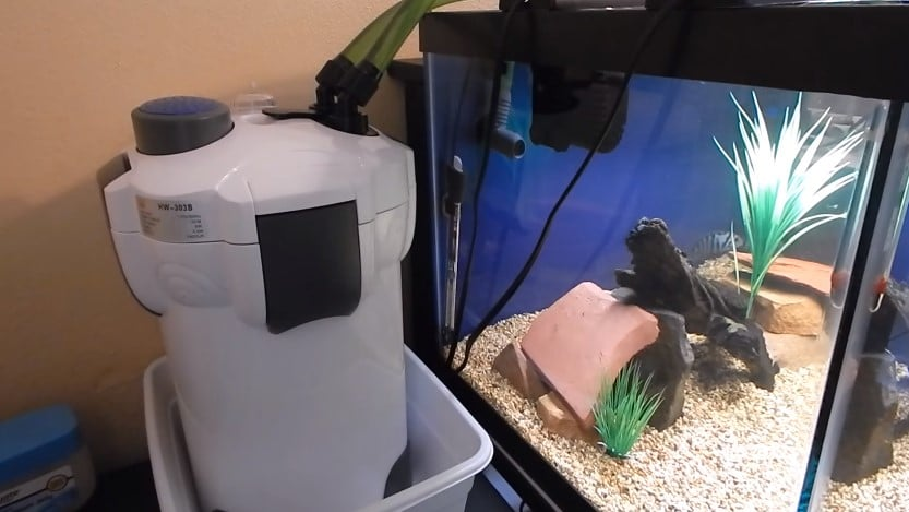 How to set up a canister filter for aquarium aquarium for How to set up a fish tank filter
