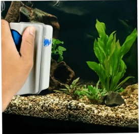 The Best Aquarium Magnet Cleaner For Use On Glass & Acrylic Tanks