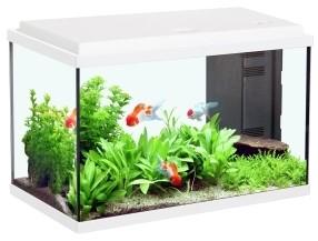 The Best Aquarium Silicone - 5 Safe, Effective Picks
