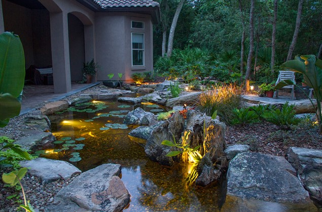 The Best Pond Lights: Underwater, LED Lights