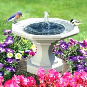 Best Fountain Pumps: Solar Power, Submersible Water Pumps