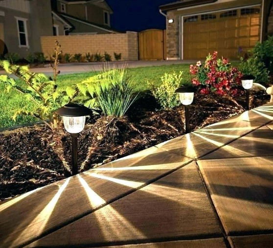 The Best Solar Landscape Lights to Illuminate Garden Path or Yard