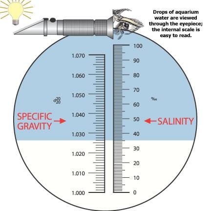 Salinity & Specific Gravity