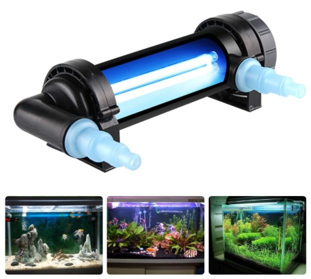 The Truth About UV Sterilizers in Aquariums