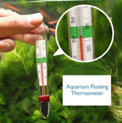 Floating aquarium thermometer